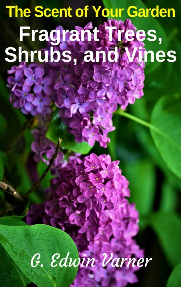 The Scent Of Your Garden: Fragrant Trees, Shrubs, and Vines