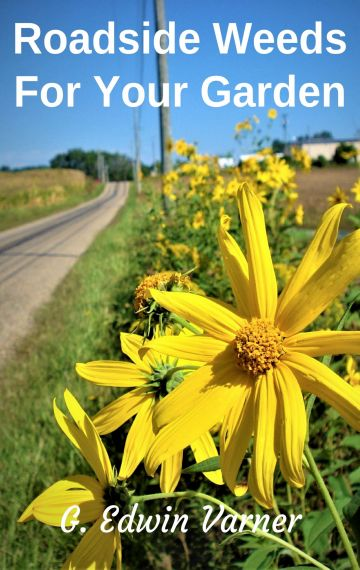 Roadside Weeds For Your Garden eBook