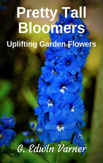 Pretty Tall Bloomers: Uplifting Garden Flowers ebook