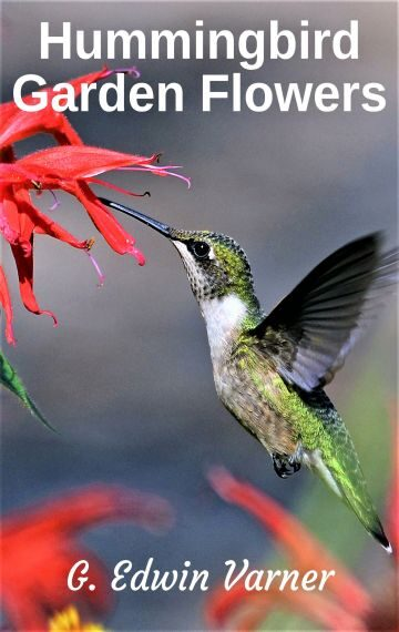 Hummingbird Garden Flowers ebook
